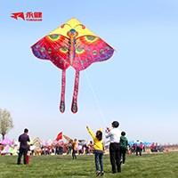 潍坊成人儿童卡通风筝