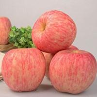 烟台栖霞红富士冰糖心苹果5斤