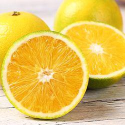 鲜蜂队 云南哀牢山冰糖橙子10斤