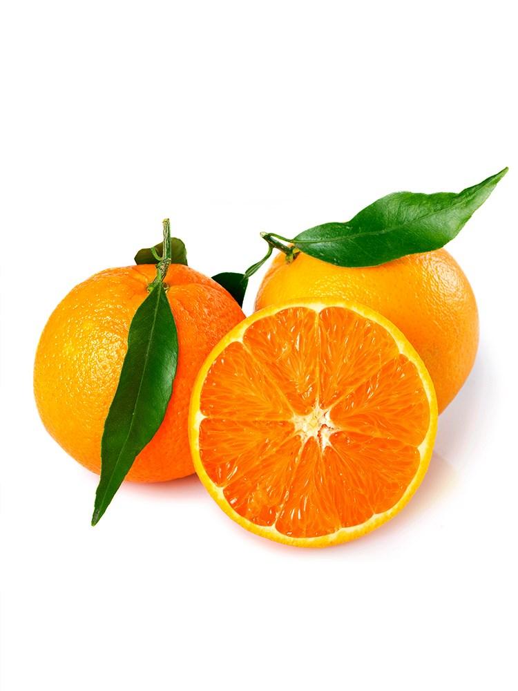 宜昌秭归脐橙5斤9~13个