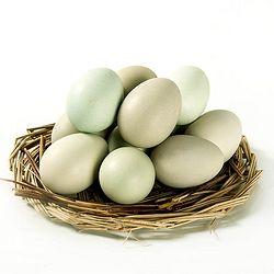 农谷鲜 农家散养绿壳鸡蛋 30枚